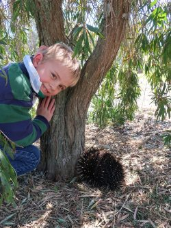 Eddie the Echidna and George Nicholls the nature spotter