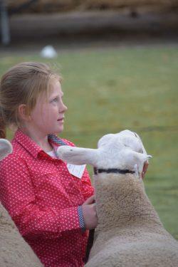 Lily Jackson and her ewe
