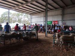Jackson Farming Sale 2017
